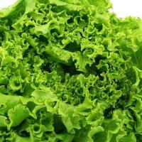 salata-dubacek