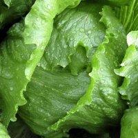 salata-kumak